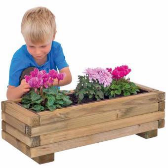 Blumenkasten – Was blüht denn da?
