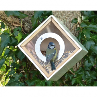 Vogel Futterkasten
