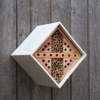 Bienen Nistkasten