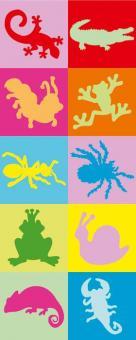 Erkennungsbildchen und Namensschilder - Erkennungsbilder Amphibien - 10 St.