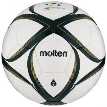 Fußball School MasteR