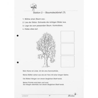 Unsere Laubbäume, Klasse 1 und 2