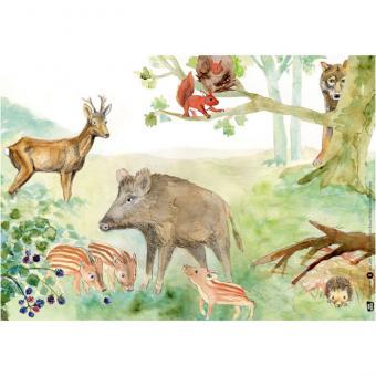 Kamishibai-Bildkartenset, Der Wolf