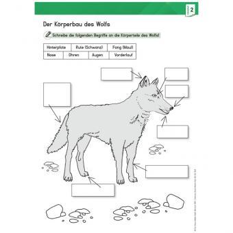 Der Wolf, Arbeitsmaterial