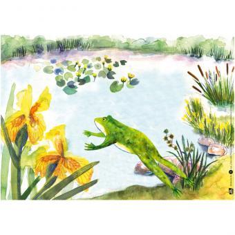 Kamishibai-Bildkartenset, Tier und Pflanzen am Teich